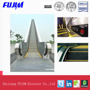 Outdoor Type Escalator with Transport Capacity 4500kg~9000kg pictures & photos
