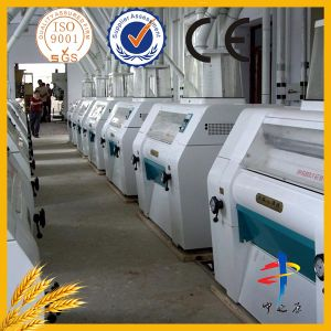 10 Tons of Wheat Flour mill pictures & photos