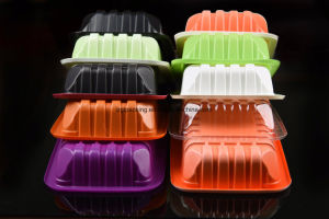 Pet PP EVOH PS Material Compartment Storage Disposable Plastic Food Packaging Box pictures & photos