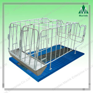 Pig Crate /Gestation Stall/Pig Equipment pictures & photos