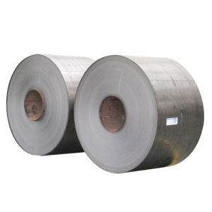 High Quaility Galvanized Steel Coil for Builing