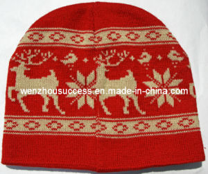 Knitted Beanie Hat (SS12-CK033) pictures & photos