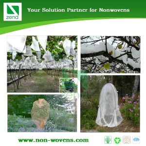Fruit Tree Cover pictures & photos