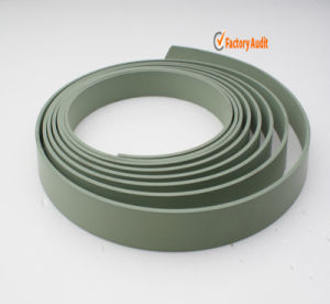 Wear Ring and Guide Tape (GST) pictures & photos
