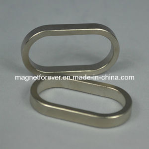 Oval Neodymium NdFeB Speaker Magnet pictures & photos