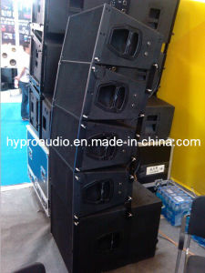 Q1 Dual 10 Inch Line Array System, Q-Sub 18 Inch Neodymium Components pictures & photos