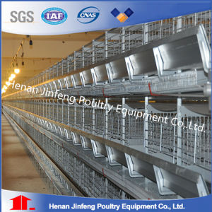 H Type Layer Cage/Layer Coop/Chicken Cage pictures & photos