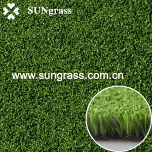 10mm High Density Sports Synthetic Grass for Cricket/Sport (GMD-10) pictures & photos