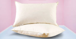 Luxury White Goose Down Pillow by 133X100 40X40s Cotton Cover pictures & photos