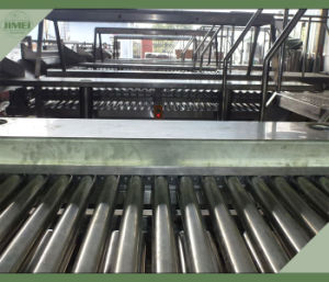 Hot Selling Walnut Selecting Conveyor System pictures & photos