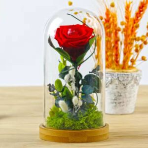 Preserved Fresh Flowers Gift Pack Immortal Flowers Never Withered Colorful Roses pictures & photos