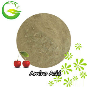 Organic Amino Acid Fertilizer with Competitive Price pictures & photos