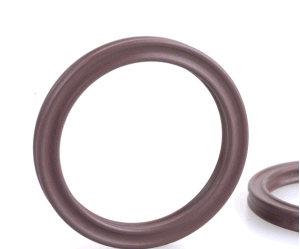 NBR EPDM FPM Silicone Rubber X-Ring pictures & photos