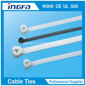 Wenzhou Self-Locking Nylon Cable Tie Zip Tie pictures & photos