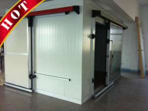 Professional Cold Room/Freezer with PU Sandwich Panel pictures & photos