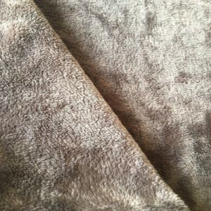 100% Polyester Solid Color Coral Velvet Fabric for Hometextile pictures & photos