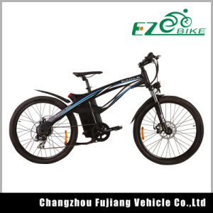 Electric Bike with Hydraulic Disc Brake Tde01 pictures & photos