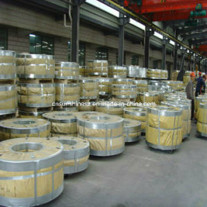 Galvanized Hot Rolled Steel Strip pictures & photos