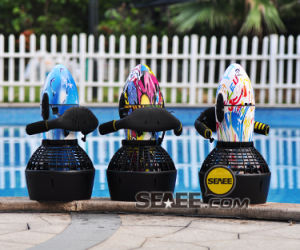 Water Scooter (SS3001) pictures & photos