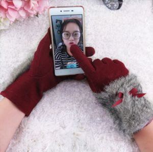 Fashion Touch-Screen Wool Gloves Women Fall and Winter Warm Gloves pictures & photos