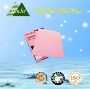 Dongguan Produce A4 & A3 Color Copy Paper Factory