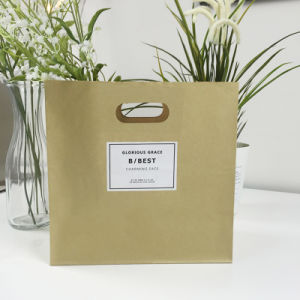 High Quality Paper Bag for Flowers pictures & photos