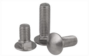 Stainless Steel Carriage Bolt (DIN 603) pictures & photos