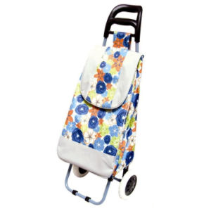 2017 New Folding 2 Wheeled Shopping Trolley Bag pictures & photos