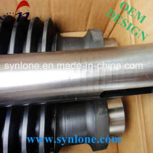 CNC Machining Alloy Steel Worm pictures & photos