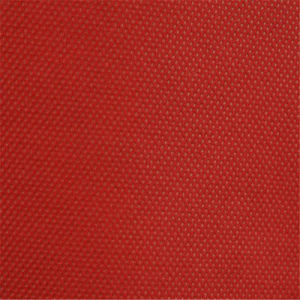 High Qaulity PP Spunbonded Non Woven Interlining Bag Fabric for Textiles Accessories pictures & photos