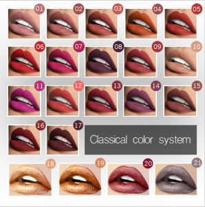 21 Colors Matte Metallic Lipstick Frosted Shimmer and Shine Lipgloss pictures & photos