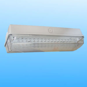 LED Emergency Light 50 LEDs (PR188/LED/M) pictures & photos