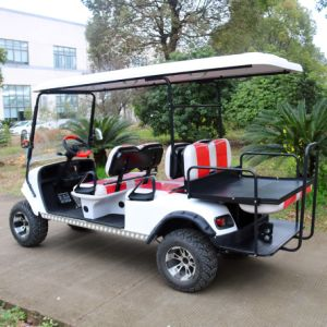 Ce Certification 6 Seater Electric Golf Cart with Rear Flip Seats pictures & photos