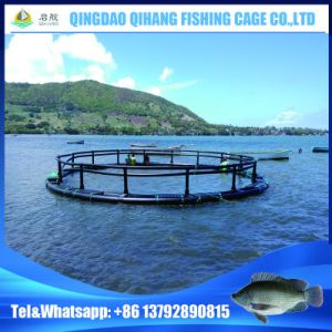 HDPE Cage Aquaculture, Aquaculture Traps, Aquaculture Products in Mauritius pictures & photos