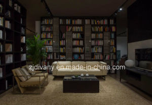 Divany Sofa Fashion Style Leather Sofa (D-73-C) pictures & photos