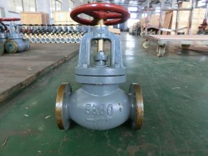 Manufacturing Machine Hydraulic Globe Check Valve pictures & photos