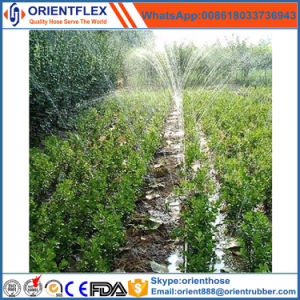 Garden Water Plastic Material Drip Irrigation Hose Micro Spray Agriculture PE Tape pictures & photos