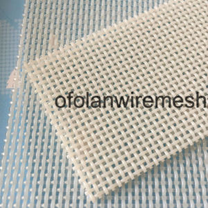 Pet Blue White Synthetic Polyester Square Dryer Mesh Screen Belt pictures & photos