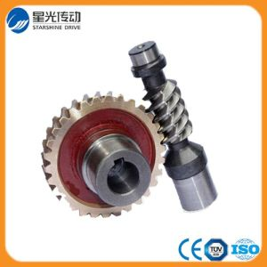 Professional Custom High Precision Gear Box Worm Wheel pictures & photos
