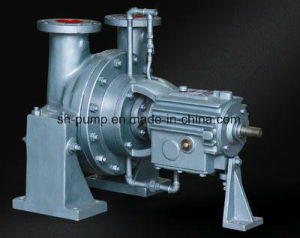 Y Series Double Stage Horizontal Liquefied Pump pictures & photos