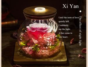 Ivenran Luminous Wish Bottle Fresh Flowers for Creative Valentine′s Day Present pictures & photos