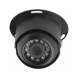 Rear View Camera with Night Vision Function (BR-RVC02) pictures & photos