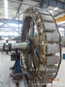 Tl Series Vertical High-Voltage Synchronous Motor pictures & photos
