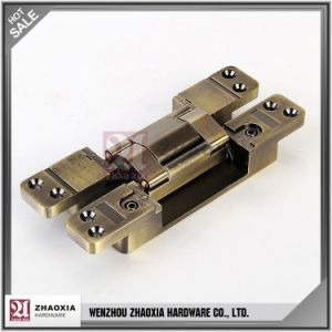 Top Quality Updated Modern Concealed Hinge pictures & photos