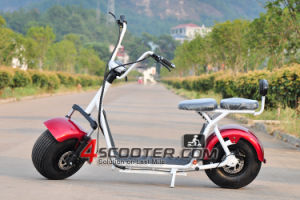 Electric Motorcycle 1000W Hub Motor Fat Tire Citycoco Electric Scooter From China pictures & photos