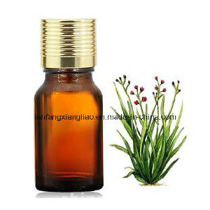 Freshing Floral Scents Essential Oil