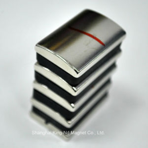 Shk013-Rare Earth Neodymium Segment Permanent Magnet with RoHS pictures & photos
