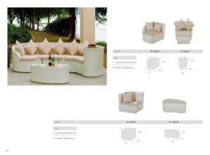 Modern Home and Oudoor Sectional Rattan Sofa