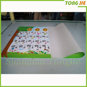 Wholesale Printing Alphabet Wall Decoration Children Stickers pictures & photos