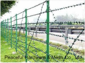 Barbed Wire Fence pictures & photos